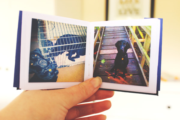 DIY: Mini Photo Album