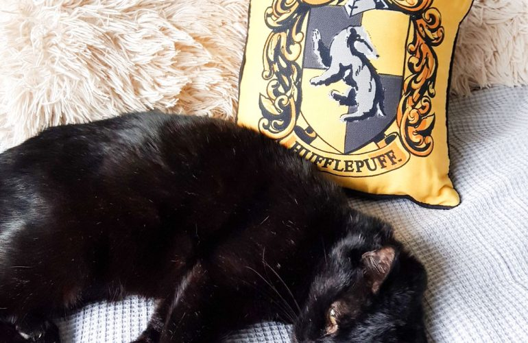 Hufflepuff cushion